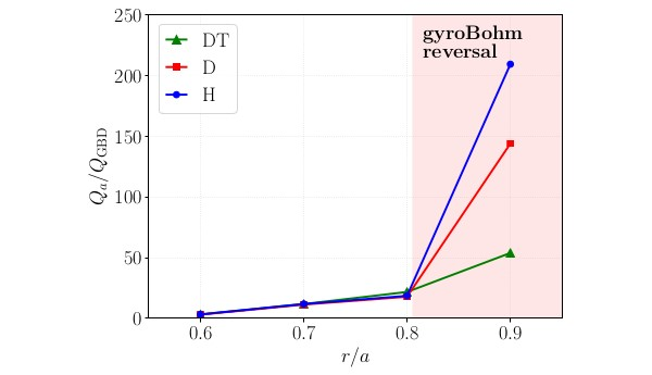CGYRO energy flux for DIII-D #173147 comparing DT, D, and H showing a strong, favorable reversal from simple gyroBohm scaling in the edge.