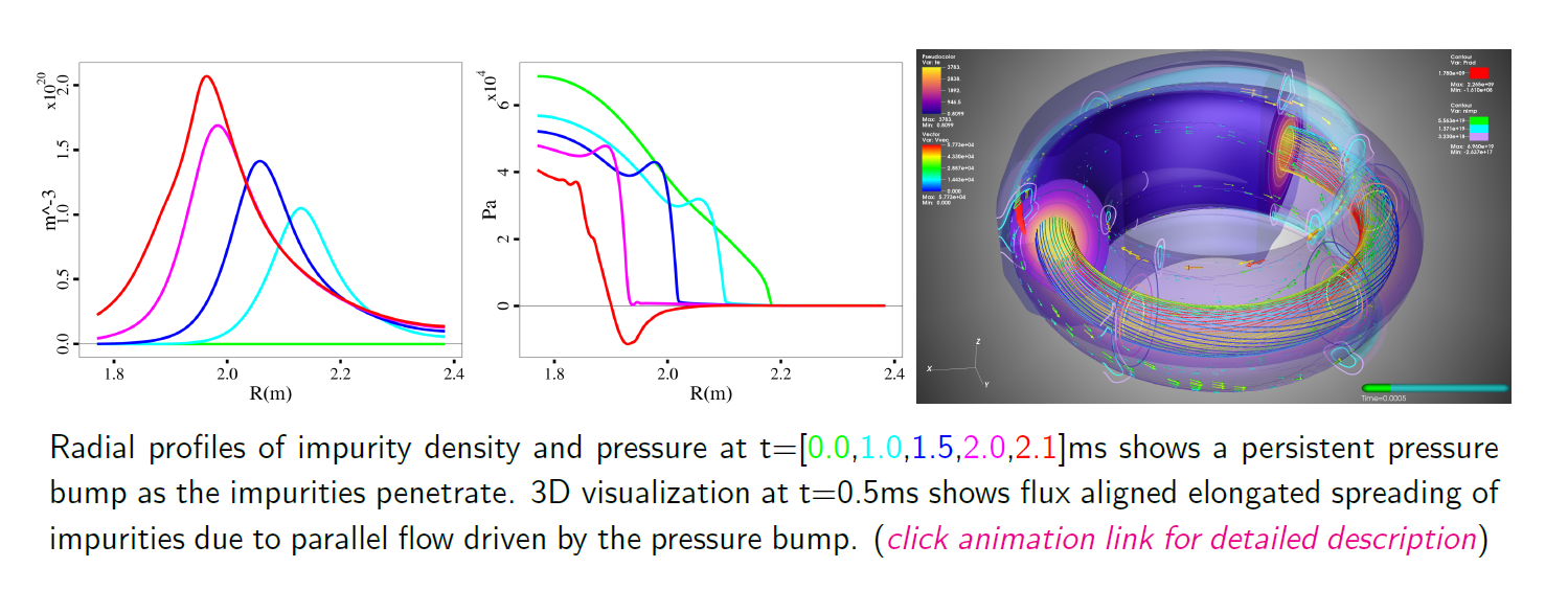 Impurity Density and Total Pressure Profiiles and 3D Visualization